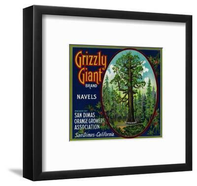 Grizzly Giant Orange Label - San Dimas, CA-Lantern Press-Framed Art Print
