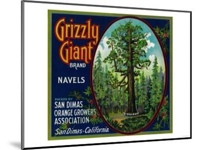 Grizzly Giant Orange Label - San Dimas, CA-Lantern Press-Mounted Art Print