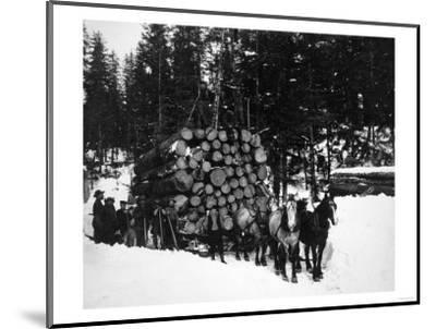 Logs being hauled on a Sleigh by a Team of Horses Photograph - Alaska-Lantern Press-Mounted Art Print