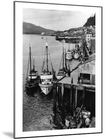 Fishing Boats along shore in Southeastern Alaska Photograph - Alaska-Lantern Press-Mounted Art Print