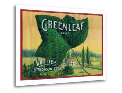 Greenleaf Lemon Label - Whittier, CA-Lantern Press-Metal Print