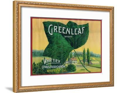 Greenleaf Lemon Label - Whittier, CA-Lantern Press-Framed Art Print