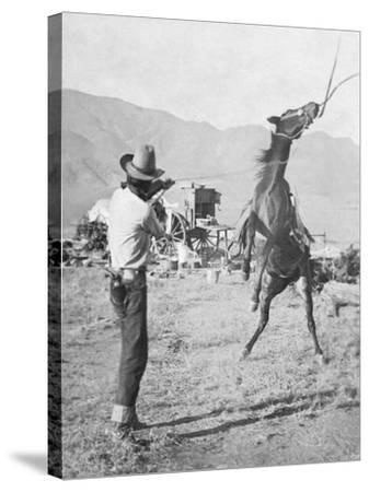 Cowboy Holds Rope around Struggling Bronco's Neck Photograph - Texas-Lantern Press-Stretched Canvas Print