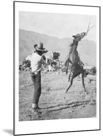 Cowboy Holds Rope around Struggling Bronco's Neck Photograph - Texas-Lantern Press-Mounted Art Print