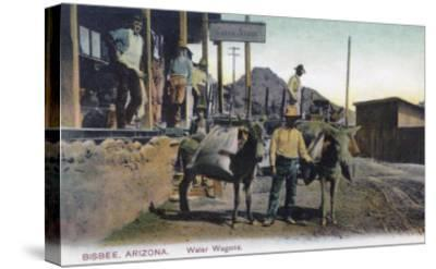 View of Donkeys Carrying Water - Bisbee, AZ-Lantern Press-Stretched Canvas Print