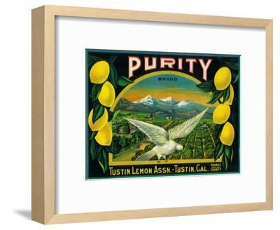 Purity Lemon Label - Tustin, CA-Lantern Press-Framed Art Print