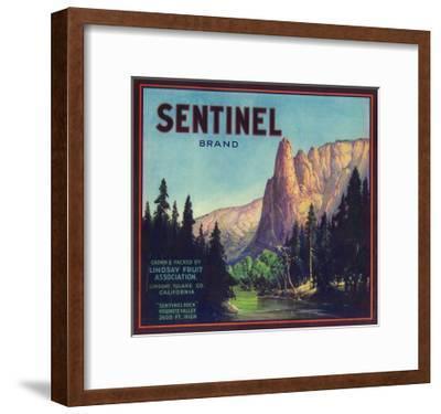 Sentinel Orange Label - Lindsay, CA-Lantern Press-Framed Art Print