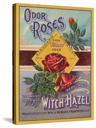 Odor Roses Witch-Hazel Label - Frankfort, NY-Lantern Press-Stretched Canvas Print