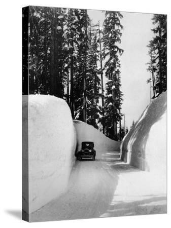 Mt. Hood Loop Road Snow Canyon Photograph - Mt. Hood, OR-Lantern Press-Stretched Canvas Print