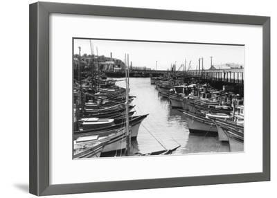 San Francisco, CA Fisherman's Wharf Boats Photograph - San Francisco, CA-Lantern Press-Framed Art Print