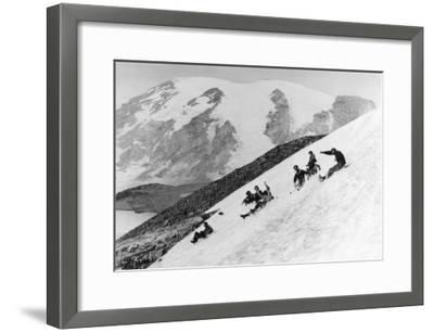 Rainier National Park Summer Snow Sledding Photograph - Mount Rainier, WA-Lantern Press-Framed Art Print