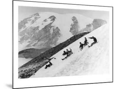 Rainier National Park Summer Snow Sledding Photograph - Mount Rainier, WA-Lantern Press-Mounted Art Print