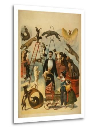 Trained Dog Act Theatrical Poster-Lantern Press-Metal Print