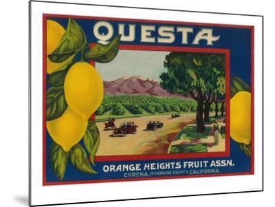 Questa Lemon Label - Corona, CA-Lantern Press-Mounted Art Print