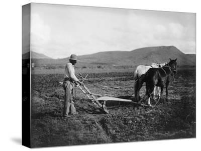 Native American Plowing His Field Photograph - Sacaton Indian Reservation, AZ-Lantern Press-Stretched Canvas Print
