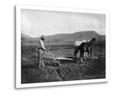 Native American Plowing His Field Photograph - Sacaton Indian Reservation, AZ-Lantern Press-Metal Print