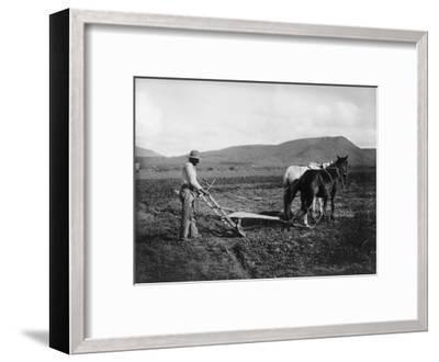 Native American Plowing His Field Photograph - Sacaton Indian Reservation, AZ-Lantern Press-Framed Art Print