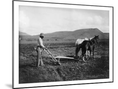 Native American Plowing His Field Photograph - Sacaton Indian Reservation, AZ-Lantern Press-Mounted Art Print