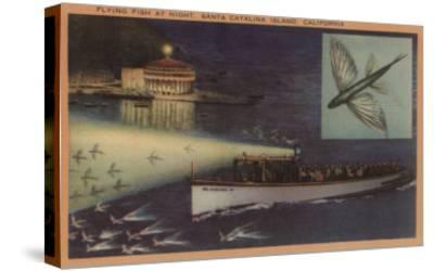Santa Catalina Island, CA Casino, Flying Fish, Boats View - Santa Catalina, CA-Lantern Press-Stretched Canvas Print