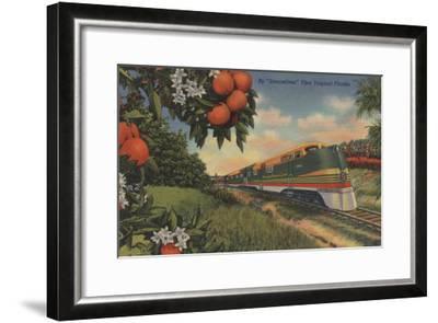 Train- Orange Blossom Special - Florida-Lantern Press-Framed Art Print