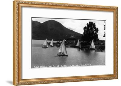 View of Sail Boats in Yacht Harbor - Clear Lake, CA-Lantern Press-Framed Art Print