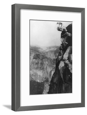 Winkey the Donkey at Glacier Point - Yosemite National Park, CA-Lantern Press-Framed Art Print