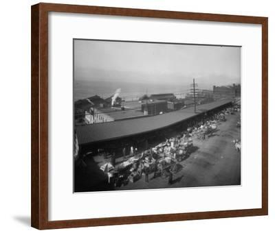Pike Place Market Photograph - Seattle, WA-Lantern Press-Framed Art Print