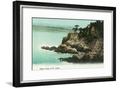 Aerial View of Eagle Dome at Point Lobos - Los Gatos, CA-Lantern Press-Framed Art Print