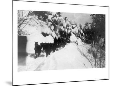 View of Stagecoach Driving through Snowy Mitchell Rd - Downieville, CA-Lantern Press-Mounted Art Print