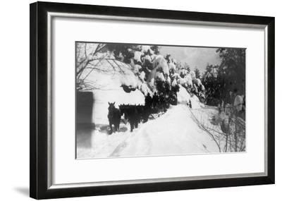 View of Stagecoach Driving through Snowy Mitchell Rd - Downieville, CA-Lantern Press-Framed Art Print