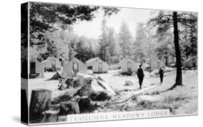 View of Tuolumne Meadows Lodge - Tuolumne, CA-Lantern Press-Stretched Canvas Print