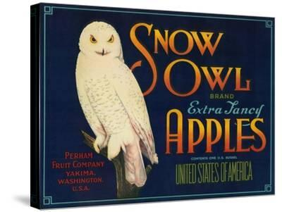 Snow Owl Apple Label - Yakima, WA-Lantern Press-Stretched Canvas Print