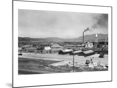 Aerial View of Lumber Mill - Cascade, ID-Lantern Press-Mounted Art Print