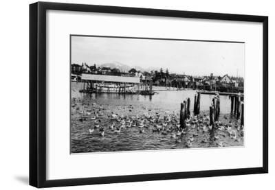 View of the Docks and Harbor - Petersburg, AK-Lantern Press-Framed Art Print