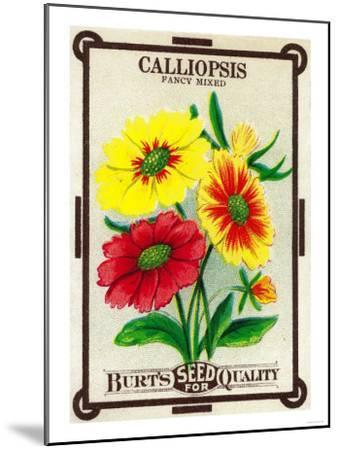 Calliopsis Seed Packet-Lantern Press-Mounted Art Print