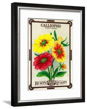 Calliopsis Seed Packet-Lantern Press-Framed Art Print