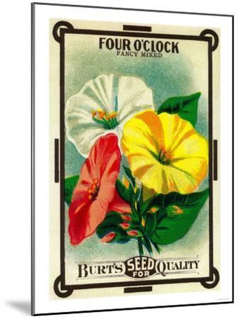 Four O'Clock Seed Packet-Lantern Press-Mounted Art Print