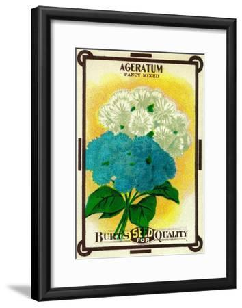 Ageratum Seed Packet-Lantern Press-Framed Art Print