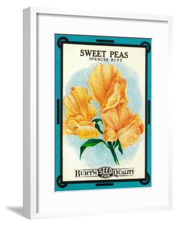Sweet Peas Seed Packet-Lantern Press-Framed Art Print