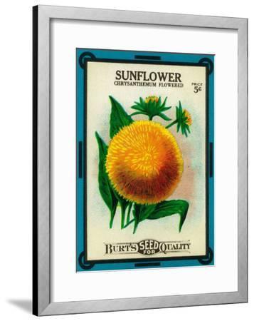 Sunflower Seed Packet-Lantern Press-Framed Art Print