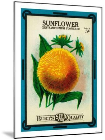 Sunflower Seed Packet-Lantern Press-Mounted Art Print