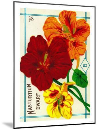 Nasturtium Seed Packet-Lantern Press-Mounted Art Print
