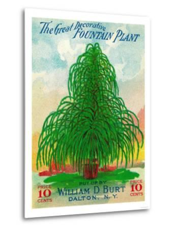 Fountain Plant Seed Packet-Lantern Press-Metal Print