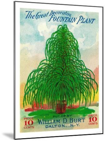 Fountain Plant Seed Packet-Lantern Press-Mounted Art Print