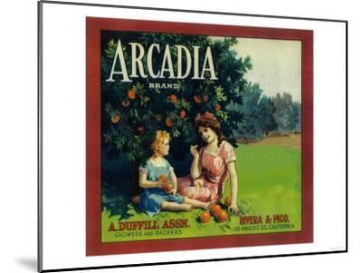 Arcadia Orange Label - Pico Rivera, CA-Lantern Press-Mounted Art Print