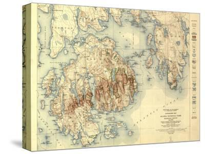 Acadia National Park - Topographic Panoramic Map-Lantern Press-Stretched Canvas Print