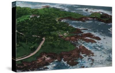 Along 17 Mile Drive on Monterey Peninsula - Monterey, CA-Lantern Press-Stretched Canvas Print