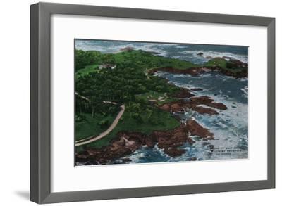 Along 17 Mile Drive on Monterey Peninsula - Monterey, CA-Lantern Press-Framed Art Print