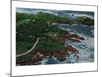 Along 17 Mile Drive on Monterey Peninsula - Monterey, CA-Lantern Press-Mounted Art Print