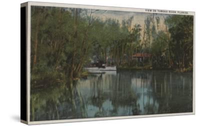 Water View of Tomoka River & Marsh, Florida - Florida-Lantern Press-Stretched Canvas Print